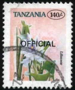Tanzania-18
